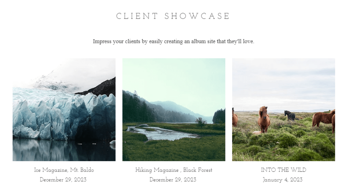 Wix You can create an album for every client. Client Showcase
