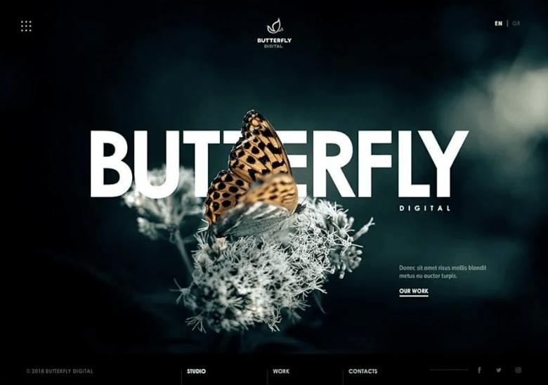 Modern WordPress theme by farhanrahman via fiverr