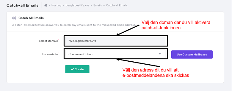 hPanel - catch-all emails