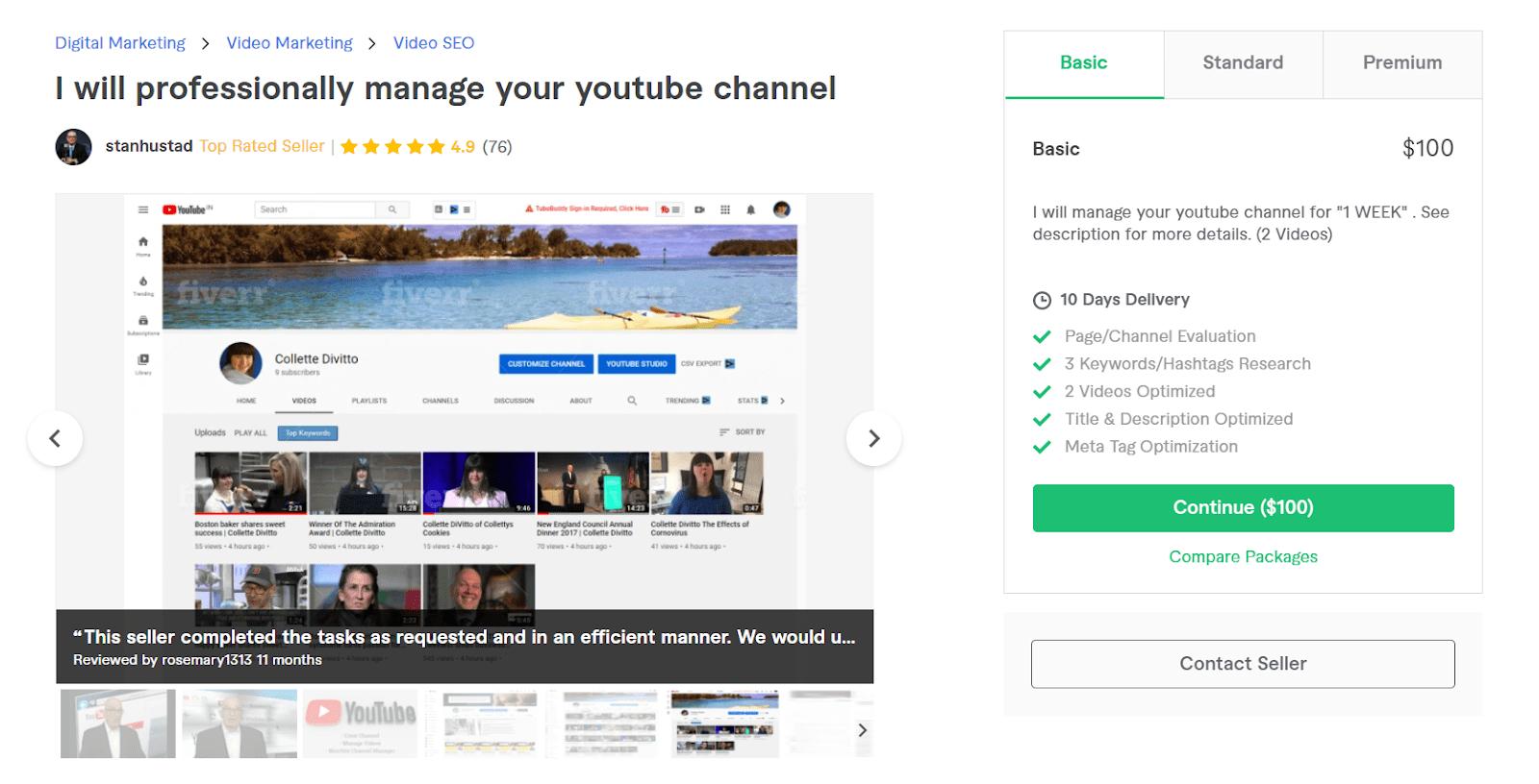 Fiverr screenshot - stanhustad youtube channel manager gig