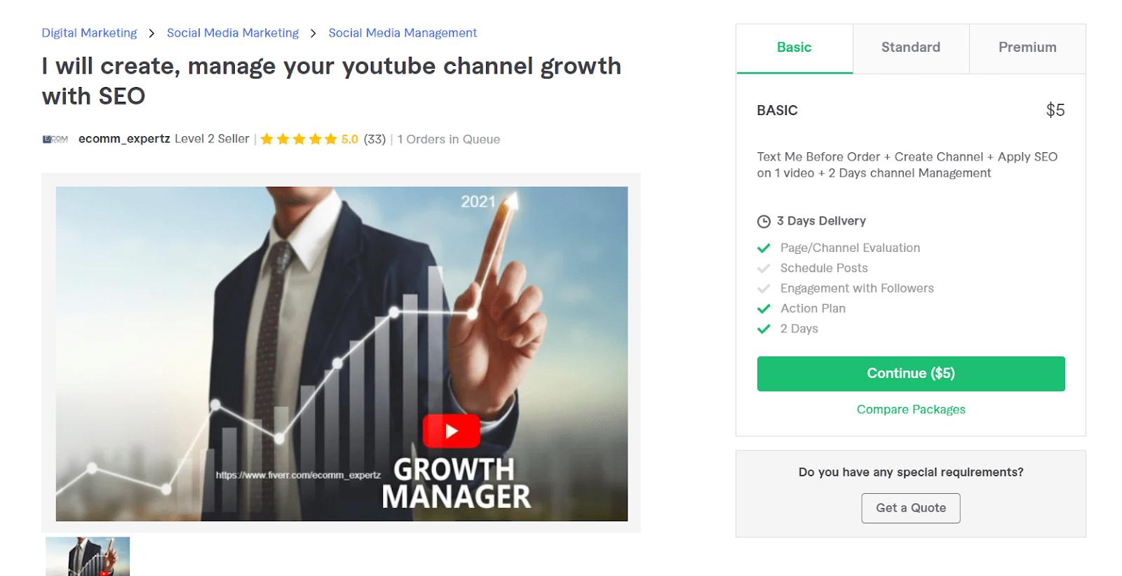 Fiverr screenshot - ecomm_expertz youtube channel manager gig