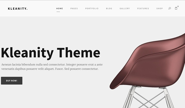 Kleanity WordPress theme from Theme Forest.