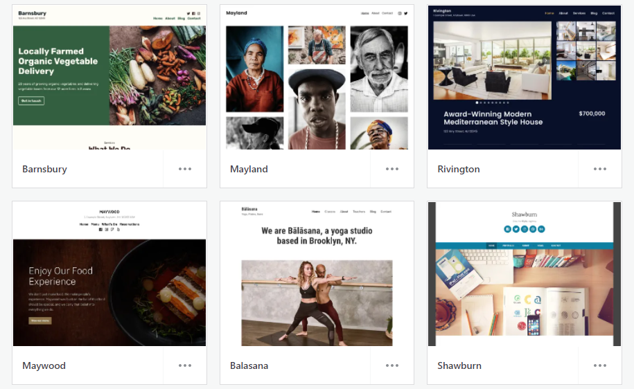 WordPress.com business themes