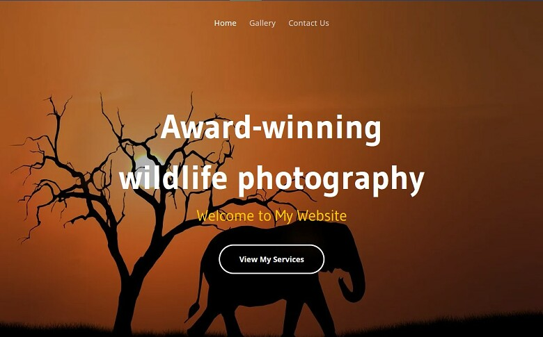 IONOS photography template